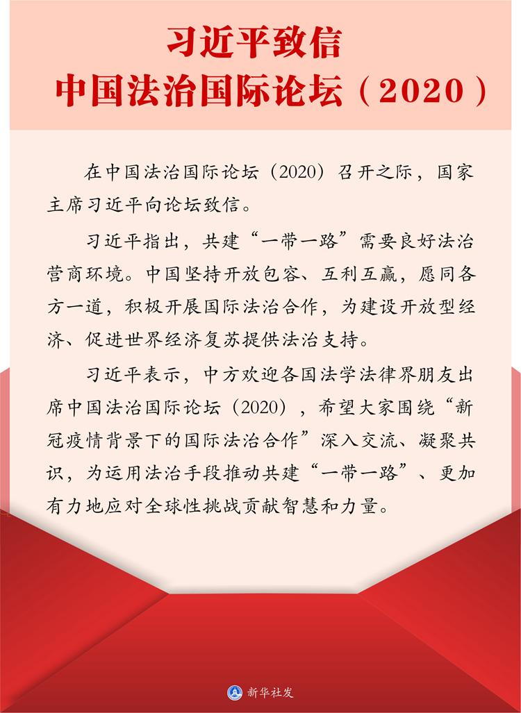 习近平 法治论坛.jpg